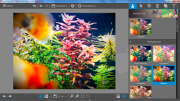 InPixio Photo Editor 1.5.6024 (2016) RUS